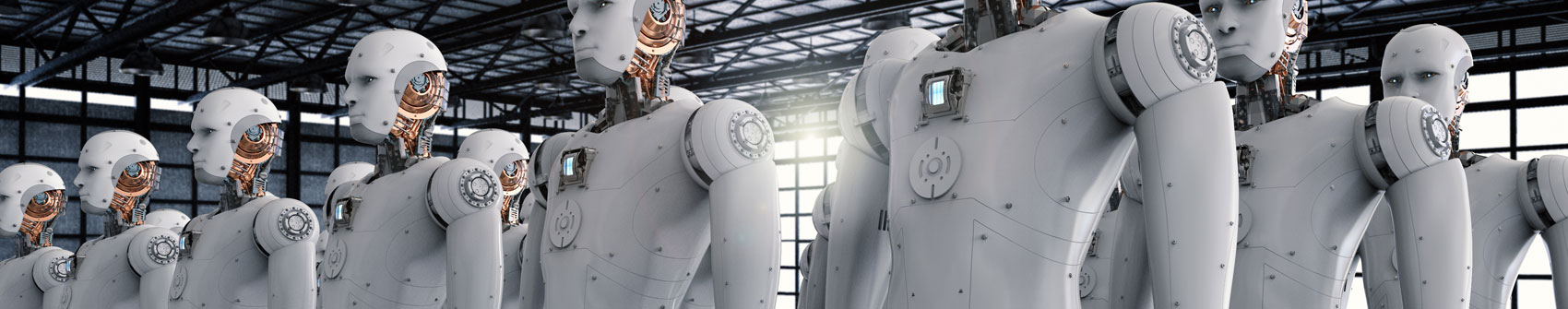 The Impact Of Robots On Inflation
